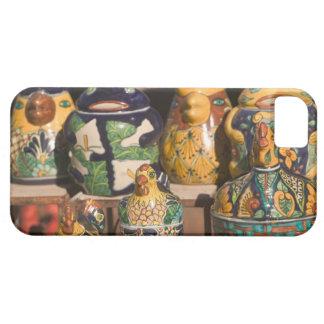 USA, Arizona, Tubac: South Arizona's Premier iPhone 5 Covers