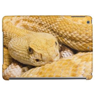 USA, Arizona, Tucson, Arizona-Sonora Desert 2 iPad Air Cover