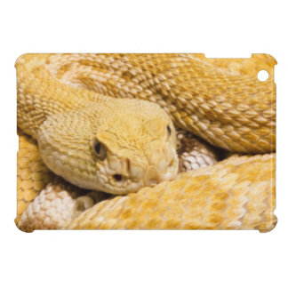 USA, Arizona, Tucson, Arizona-Sonora Desert 2 iPad Mini Cases