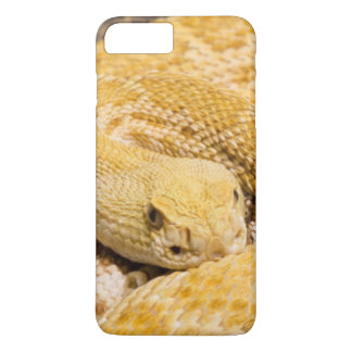 USA, Arizona, Tucson, Arizona-Sonora Desert 2 iPhone 8 Plus/7 Plus Case