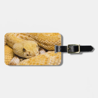 USA, Arizona, Tucson, Arizona-Sonora Desert 2 Luggage Tag