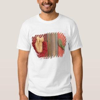 USA, Arizona, Tucson: Presidio Historic District Tshirts
