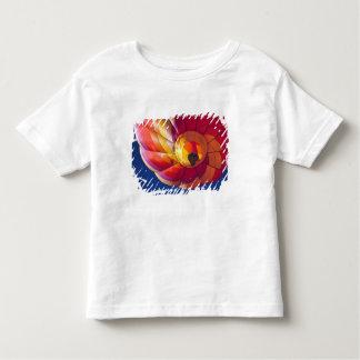 USA, Arizona, Val Vista. A colorful hot-air Shirts