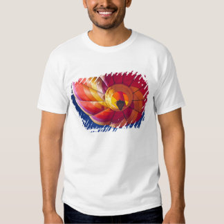 USA, Arizona, Val Vista. A colorful hot-air T Shirts