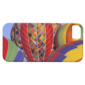 USA, Arizona, Val Vista. Colorful hot-air Case For The iPhone 5