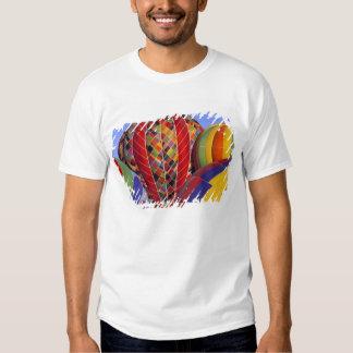 USA, Arizona, Val Vista. Colorful hot-air Tshirts