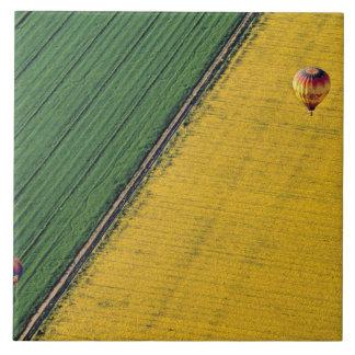 USA, Arizona, Val Vista. Hot-air balloons soar Tile