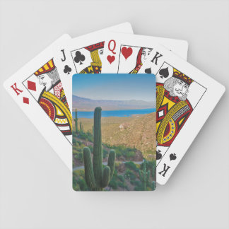 USA, Arizona. View From The Entrance To Tonto Playing Cards