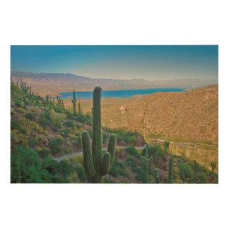 USA, Arizona. View From The Entrance To Tonto Wood Print