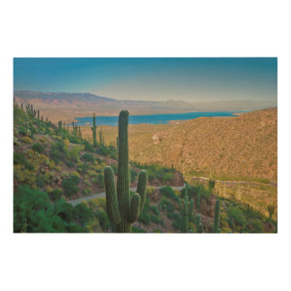 USA, Arizona. View From The Entrance To Tonto Wood Wall Decor