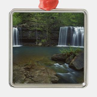 USA, Arkansas, Ozark- St Francis National Silver-Colored Square Decoration