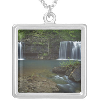 USA, Arkansas, Ozark- St Francis National Silver Plated Necklace