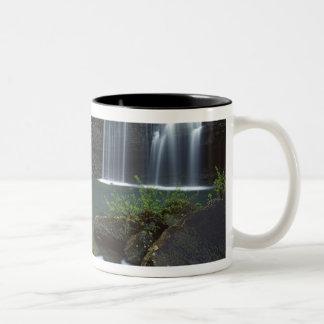 USA, Arkansas, Ozark- St Francis National Two-Tone Coffee Mug