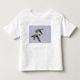 USA, Blaine, Washington. Male and female Toddler T-Shirt