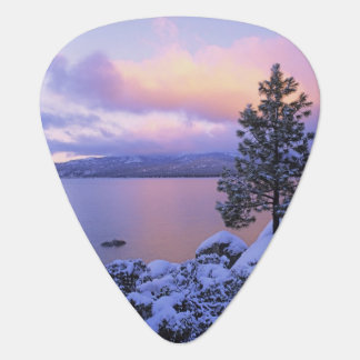 USA, California. A winter day at Lake Tahoe. Plectrum