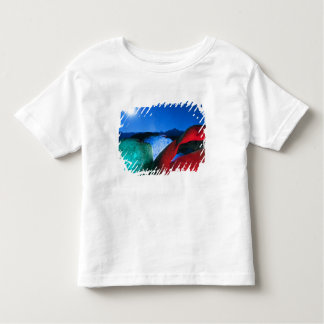 USA, California, Alabama Hills, Night photo of Toddler T-Shirt