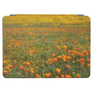 USA, California, Antelope Valley California iPad Air Cover