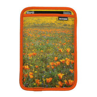 USA, California, Antelope Valley California iPad Mini Sleeve