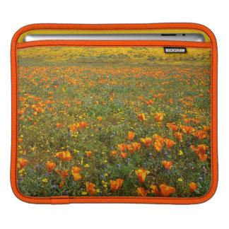 USA, California, Antelope Valley California iPad Sleeve
