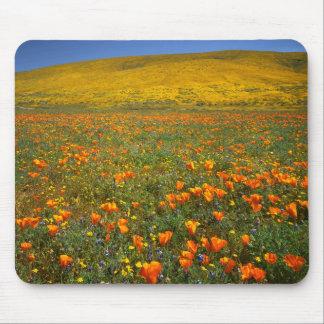 USA, California, Antelope Valley California Mouse Pad