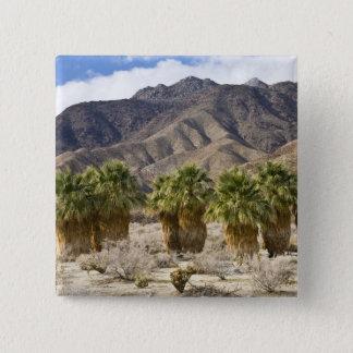 USA, California, Anza-Borrego Desert State Park. 15 Cm Square Badge