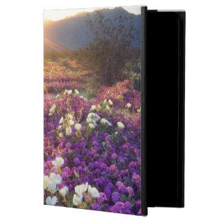 USA, California, Anza-Borrego Desert State Park. 2 Case For iPad Air