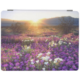 USA, California, Anza-Borrego Desert State Park. 2 iPad Cover