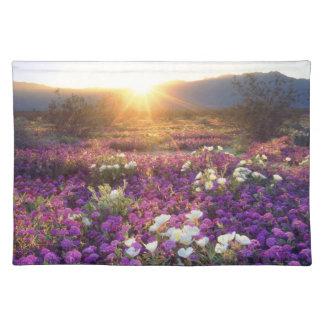 USA, California, Anza-Borrego Desert State Park. 2 Placemat