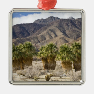 USA, California, Anza-Borrego Desert State Park. Christmas Ornament
