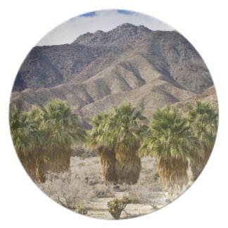 USA, California, Anza-Borrego Desert State Park. Plate