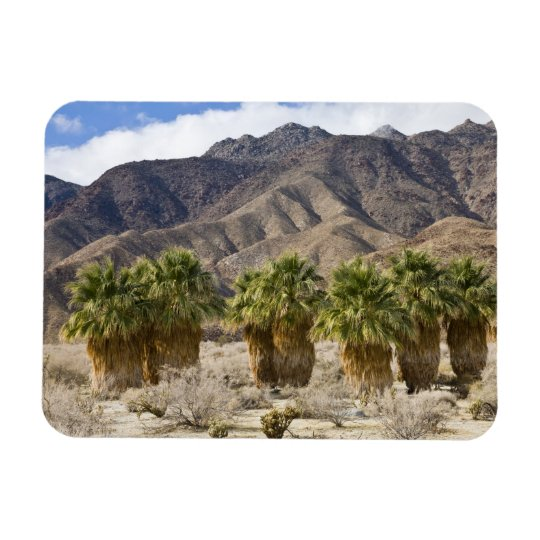 USA, California, Anza-Borrego Desert State Park. Rectangular Photo Magnet