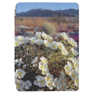 USA, California, Anza-Borrego DSP. Dune evening 2 iPad Air Cover