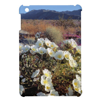 USA, California, Anza-Borrego DSP. Dune evening 2 iPad Mini Covers
