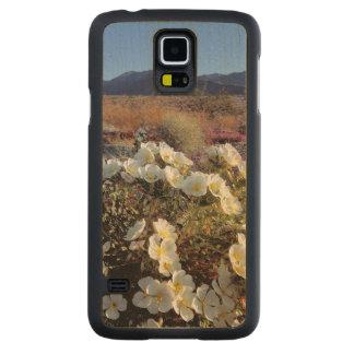 USA, California, Anza-Borrego DSP. Dune evening 2 Maple Galaxy S5 Case