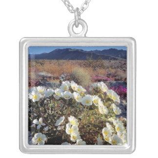 USA, California, Anza-Borrego DSP. Dune evening 2 Silver Plated Necklace