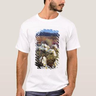 USA, California, Anza-Borrego DSP. Dune evening 2 T-Shirt