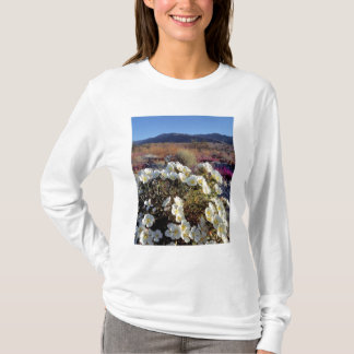 USA, California, Anza-Borrego DSP. Dune evening 2 T-Shirt