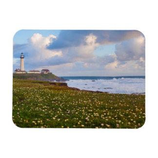USA, California. Big Sur Panorama Magnet