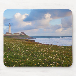 USA, California. Big Sur Panorama Mouse Mat