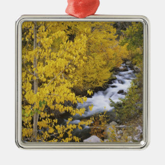 USA, California. Bishop Creek and aspen trees in Christmas Ornament