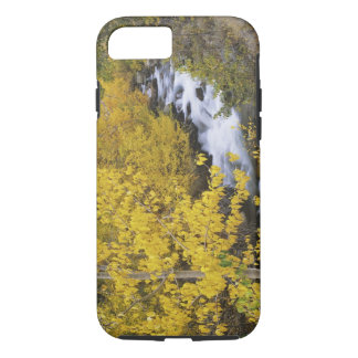 USA, California. Bishop Creek and aspen trees in iPhone 8/7 Case