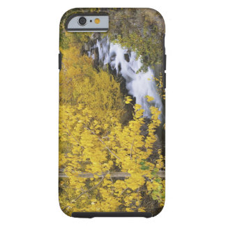 USA, California. Bishop Creek and aspen trees in Tough iPhone 6 Case