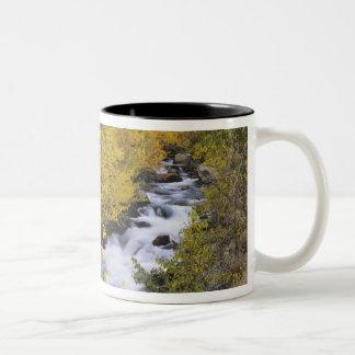 USA, California. Bishop Creek and aspen trees in Two-Tone Coffee Mug