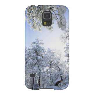 USA, California, Cleveland National Forest, Case For Galaxy S5