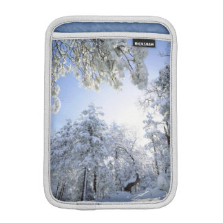USA, California, Cleveland National Forest, iPad Mini Sleeve