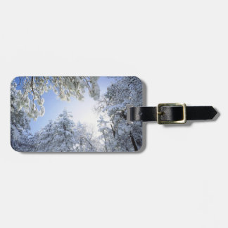 USA, California, Cleveland National Forest, Luggage Tag