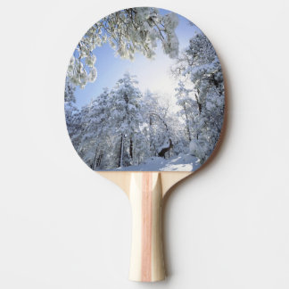 USA, California, Cleveland National Forest, Ping Pong Paddle