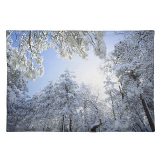 USA, California, Cleveland National Forest, Placemat