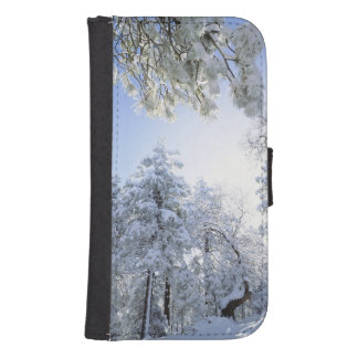 USA, California, Cleveland National Forest, Samsung S4 Wallet Case
