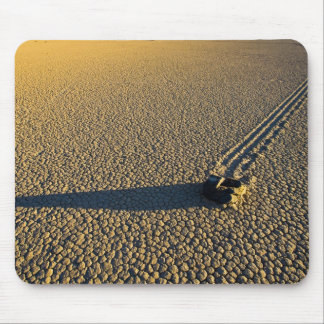 USA, California, Death Valley National Park. 2 Mouse Mat